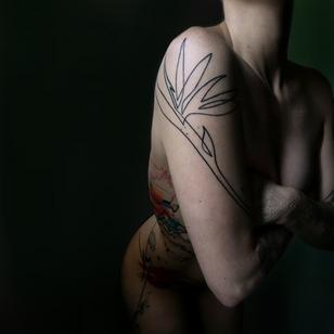 Bird of Paradise illustrative tattoo by Mo Ganji on Morgan English aka Tattrx #MoGanji #MorganEnglish #Tattrx #tattoocollector #linework #Illustrative #birdofparadise #flower #floral #plant #nature #armtattoo
