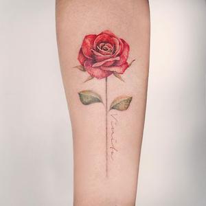 Rose tattoo by A.re_tattoo #Aretattoo #A.re_tattoo #TattoodoApp #tattooartist #tattooart #tattooidea #inspiringtattoo #besttattoo #awesometattoo #rosetattoo #flowertattoo #floral #script #color #realism #watercolor