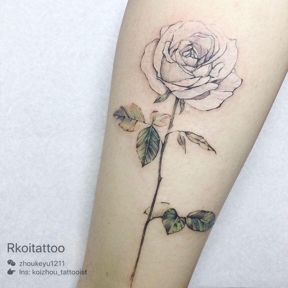 Rose tattoo by Rkoitattoo #rkoitattoo #rosetattoo #rosetattoos #rosetattooidea #rose #roses #flower #floral #petals #plant #nature #bloom