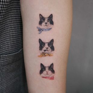 Cat tattoo by Youyeon #Youyeon #realism #realistic #cattattoos #cattattoo #kittytattoo #kitty #cat #petportrait #animal #nature