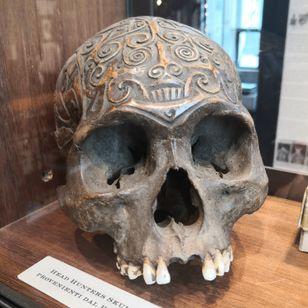 Carved human skull, Borneo, #romatatttomuseum #tattoohistory #tattoomuseum #tattooculture #rome #italy