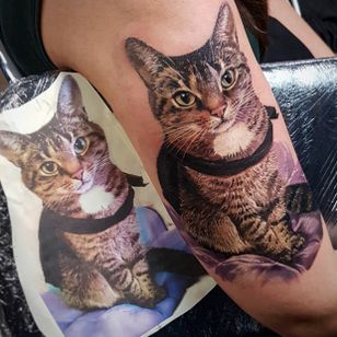 #LedCoult #realismo #realism #tatuadoresdobrasil #brasil #brazil #brazilianartist #gato #cat