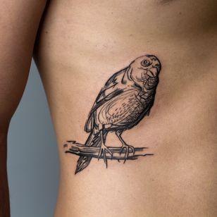 Illustrative tattoo by Cee Burgundy #CeeBurgundy #queertattooer #qttr #vegantattoo #vegantattooer #illustrative #abstract #abstractexpressionism #bird #feathers #nature