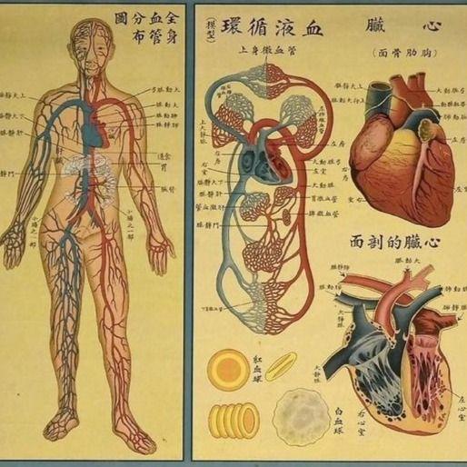 Antique acupuncture chart #medicicaltattooing #culturaltattoos #healingpoweroftattoos #dotworktattoos #curativetattooing
