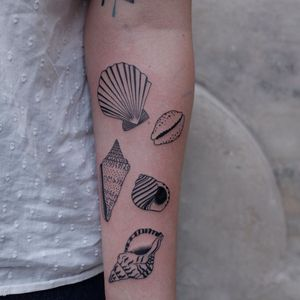 Illustrative tattoo by Mab Matiere Noire #MabMatiereNoire #illustrative #linework #nature #expressive #seashell #shells #oceanlife #conch