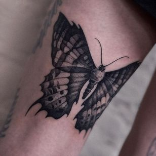 Tattoo by Alena Zozulenko #AlenaZozulenkoo #illustrative #blackandgrey #butterfly #darkart #wings #nature #animal #insect
