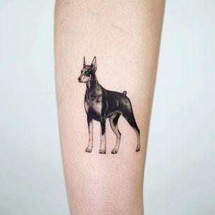 Doberman tattoo by zeal tattoo #zealtattoo #doberman #realism #dogtattoo #dog #petportrait #animal