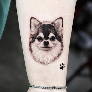 Chihuahua tattoo by tattooist yeono #tattooistyeono #chihuahua #dogtattoo #dog #petportrait #animal