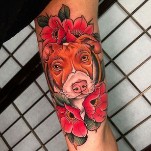 Pitbull tattoo by camilovipertattoo #camilovipertattoo #pitbull #traditional #dogtattoo #dog #petportrait #animal