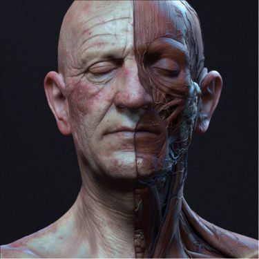 8 Creative Anatomical Head Tattoos