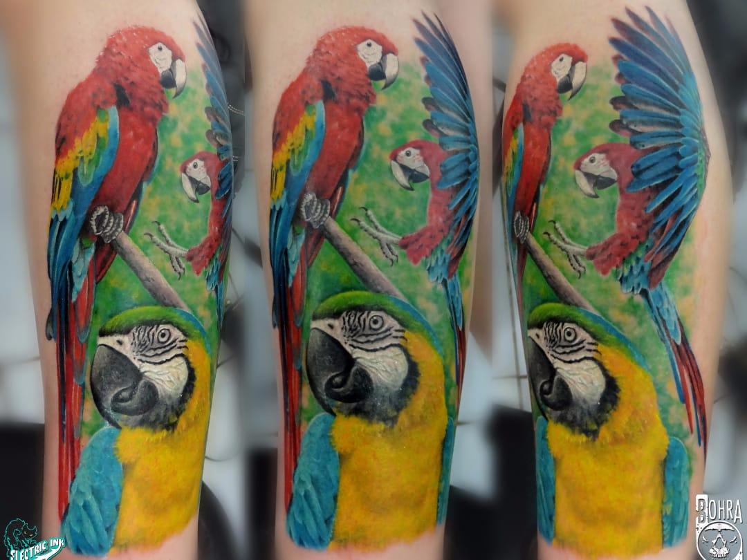 Ararinhas #JandersonBolzan #Bohra #brasil #brazil #brazilianartist #tatuadoresdobrasil #realismo #realism #colorido #colorful #arara #ave #passaro #bird #nature #natureza
