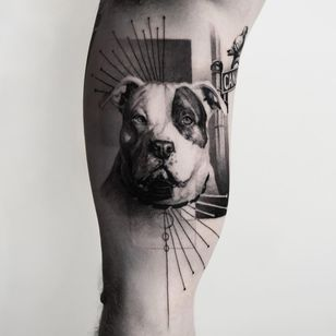Realistic pitbull pup tattoo by Oscar Akermo #OscarAkermo #petportraittattoo #blackandgrey #realism #realistic #hyperrealism #pitbull #dog #puppy #streetsign #pigeon #bird #Linework #abstract #mashup #tattoooftheday