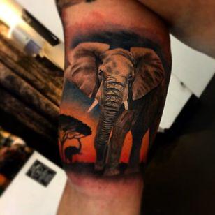 Beautiful savanna with elephants by Bob Ink.