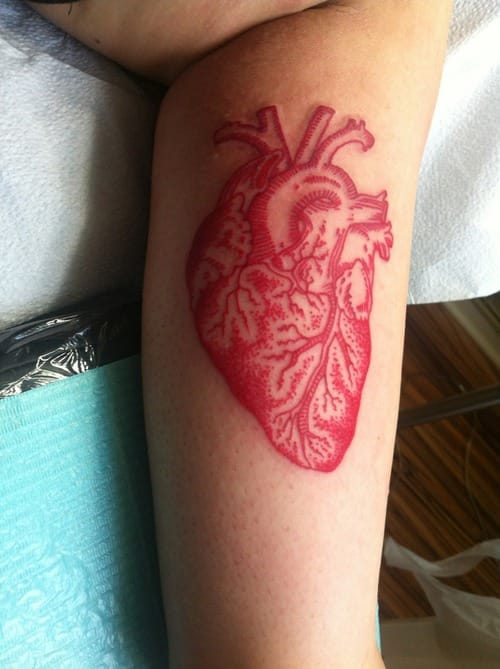 Anatomic heart in dotwork. Artist unknown #anatomicheart #heart #anatomic #redink #dotwork #linework