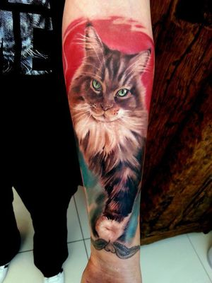 #realistic #watercolor #fullcolor #cat #AndrzejNiuniekMisztal