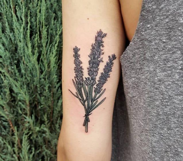 Realism lavender bundle by @therubygore (photo credit Instagram).