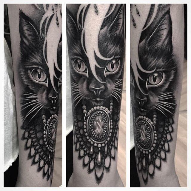 Lovely black cat.