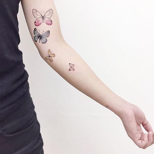 Exquisite butterflies.