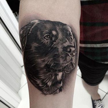 11 Reserved Rottweiler Tattoos