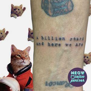 """Letra da música """"I can make you feel young again"""" do @copelandband para o meu grande amigo @alienmarques 💖 #tattooescrita #escrita #tatuagemdelicada #finaedelicada #tatuagemlinhafina #tattoooftheday #tattoodo #tat #tats #tatuagem #tattoobrasil #tatuagemsp #tatts #tattoo #tat #tattoobrasil #tattoobr #tattooer #tattoos #tattoo2me #tattooart #tatuagem #tatuagemsp #tattoodo #tattoolove #tatuagembr #tatuagembrasil #tattooinspiration #tattoo2me #tatuecomumamina"""