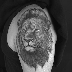 Lion portrait made at Invisible NYC #lion #realistic #portrait #tattoo #blackandgrey #chrisgarver #invisiblenyc