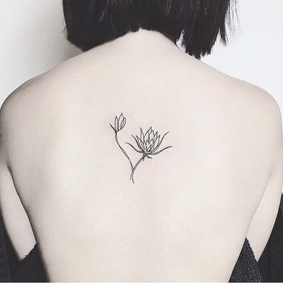 Queen of the night cactus tattoo done by our tattoo artist Laura #Nothingwild #nothingwild tattoo #flowersbouquet #flowerstattoo #flowers #cactus #cactustattoo #blacklines #bouquet #bouquettattoo #armtattoo #lines #linework #symetric #geometric #veganink #coloredtattoo #tattoooftheday #tattooshop #tattooartist #mandalalove #nycink #nyctattoo #newyorktattoo