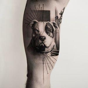 #dog #portrait