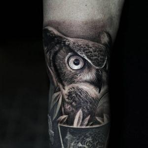 #stefanoalcantara #owl #owltattoo