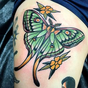 #americanatattoos #butterfly