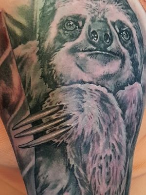 #sloth #slothtattoo #love #reppinink #tattoofixers #sloths