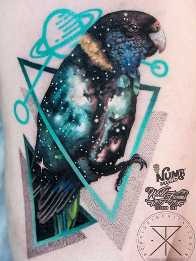 Tattoo by Chris Rigoni #ChrisRigoni #realism #realistic #hyperrealism #blackandgrey #color #abstract #shapes #mashup #bird #parrot #solarsystem #stars #galaxy #feathers #wings #dotwork #saturn
