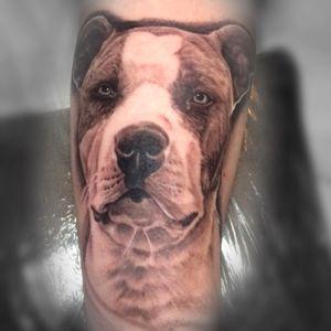 #yutattoo #yutattooberlin #justinyu #realistic #realistictattoo #selfdrawing #selfdrawn #berlintattoo #inkstagram #tattoolife #searchtattoo #suchetattooartist #germantattooers #germanink #tätowierung #greattattooartist #greatwork #followus #followme #folgtuns #berlin #kreuzberg #berlinink #berlintattooartist #tattoo_art_worldwide #inkmagazine #tattooartismagazine #photooftheday #tatted #instatattoo
