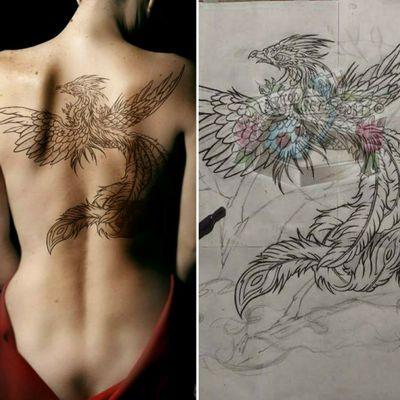 #muestra #fenix #boceto #working #ave #anatomy #draw #drawing