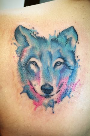 Freehanded watercolour wolf on the shoulder #watercolortattoo #wolftattoo #watercolorwolf