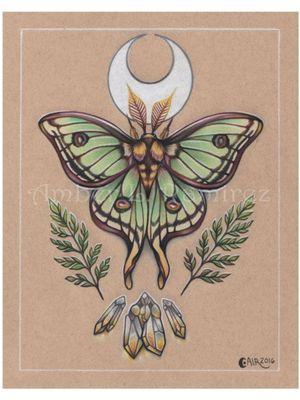 Luna Moth, Moon, Gems, Ferns