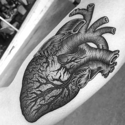 #anatomicalheart #blackwork #linework #dotwork