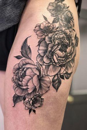 Fine line peonies flowers blackwerk stippling