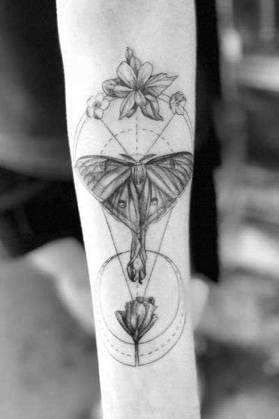 Lunar moth with some moon geometry #moth #forearmtattoo #blackandgreytattoo #geometrictattoo