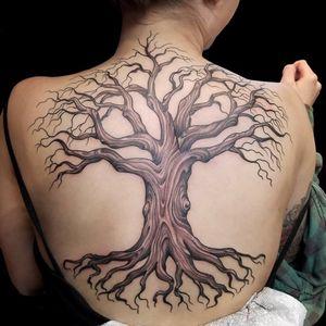 Tattoo by artist Hannah Clock. See more of Hannah's work: http://www.larktattoo.com/long-island-team-homepage/hannah-clock/ . .  .  .  . #tree #treetattoo #colortattoo #backtattoo #backpiece #backpiecetattoo #nature #naturetattoo #femaletattooer #femaletattooartist #femaleartist #tattoo #tattoos #tat #tats #tatts #tatted #tattedup #tattoist #tattooed #inked #inkedup #ink #tattoooftheday #amazingink #bodyart #tattooig #tattoosofinstagram #instatats#larktattoo #larktattoos #larktattoowestbury #westbury #longisland #NY #NewYork #usa #art