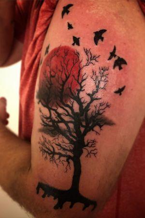 Dark tree & red sun