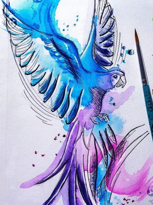 A liberdade em cores!!!