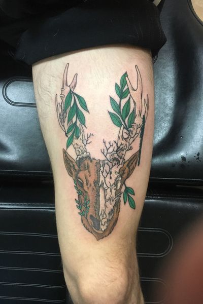 Stag thigh piece #stag #halfskull #nature