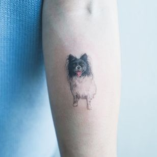 Tattoo by Sol Tattoo #SolTattoo #Sol #dogtattoos #realistic #realism #painterly #color #hyperrealism #dog #animal #petportrait #pet #portrait #cute #friend