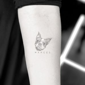 Tattoo by Mr.K #MrK #dogtattoos #blackandgrey #realism #realistic #tiny #detailed #text #name #font #lettering #dog #petportrait #frenchpug #pug #cute