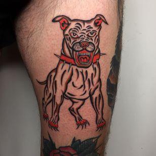 Tattoo by Dexter #Dexter #dextertattooer #dogtattoos #dog #pitbull #spikes #animal #petportrait