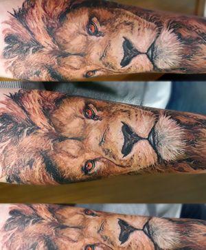 #lion #realistic #realism #Sc #Br