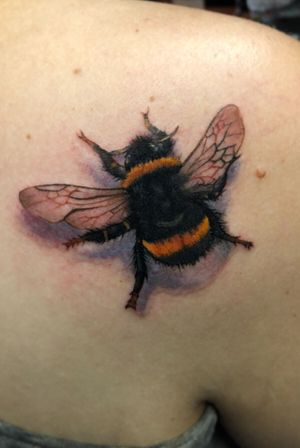 #bee #insect #realism