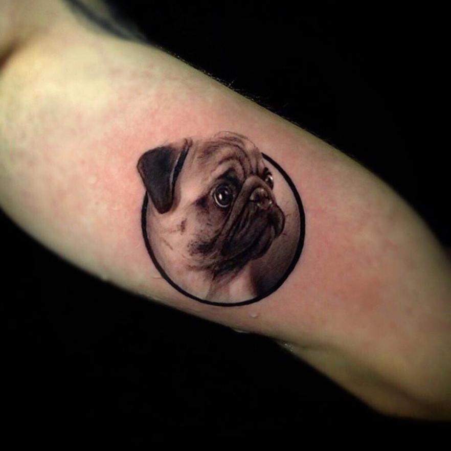 Pug tattoo by Ganga Tattoo #GangaTattoo #pug #dog #petportrait #realism #hyperrealism