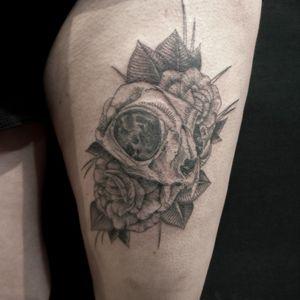 Fineline Cat skull roses