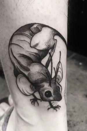 Deer mouse idol 🦌🐁